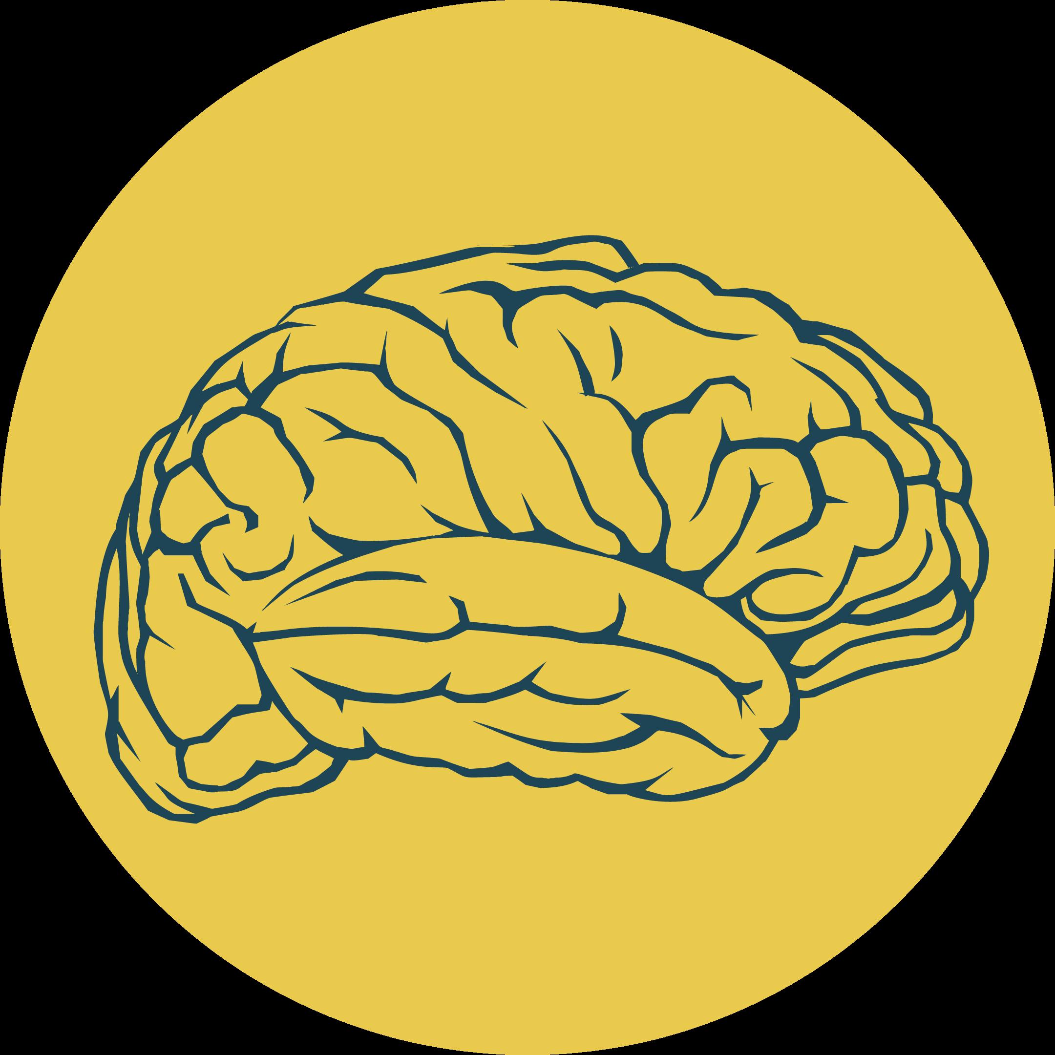 Four Pillars of Migraine 1
